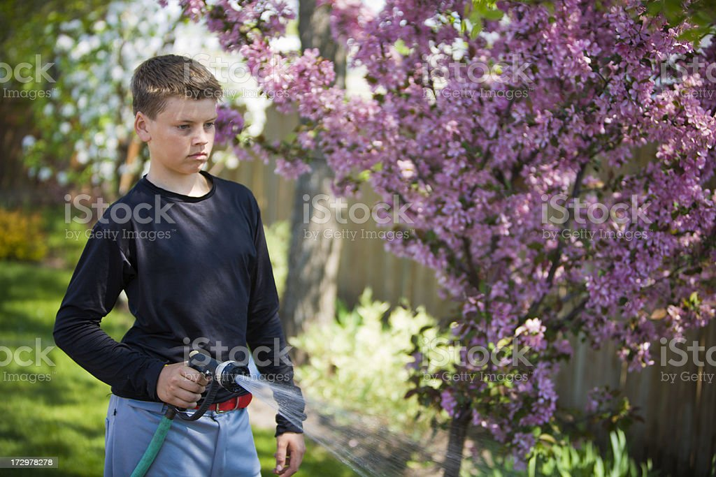 Ball Player watering the trees stock photo