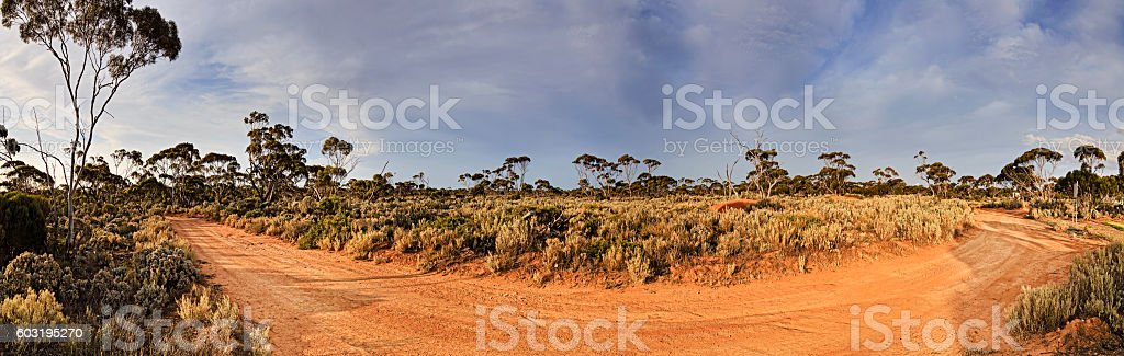 WA Ballad unsealed road pan stock photo
