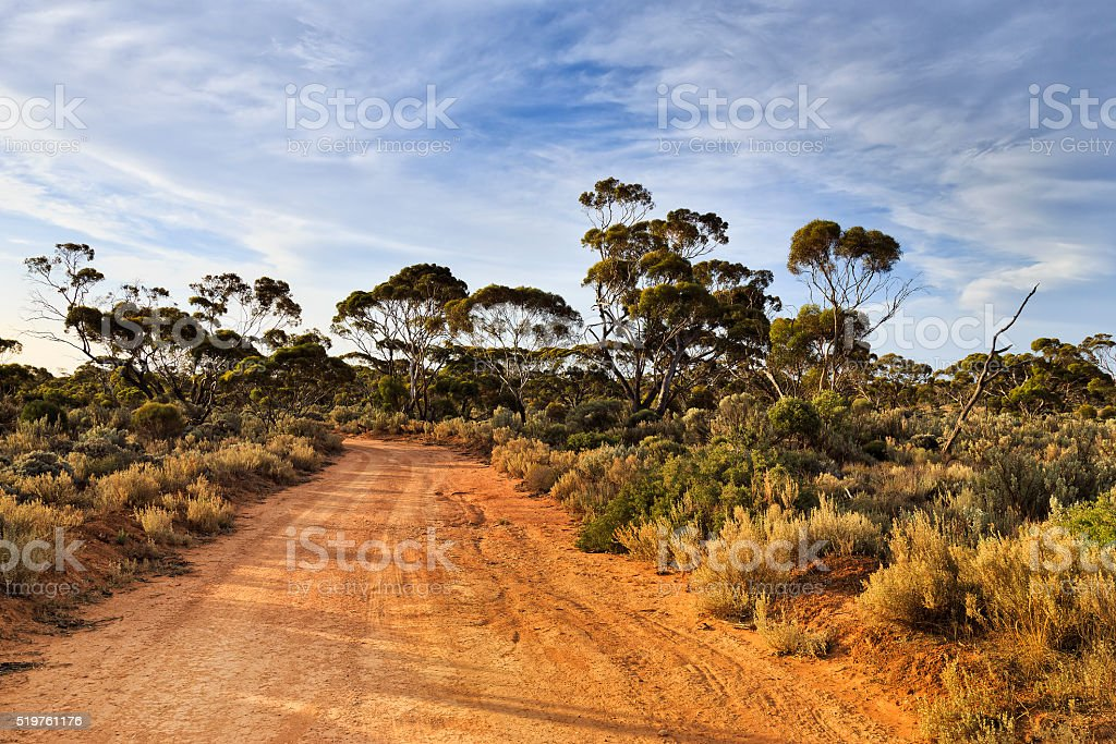 WA Balladonia Outback lit trail stock photo