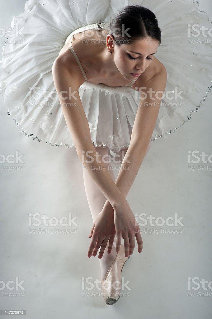 Ballerin as swan stock photo
