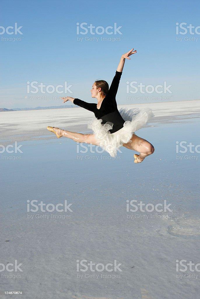 Ballerina in Flight royalty-free stock photo