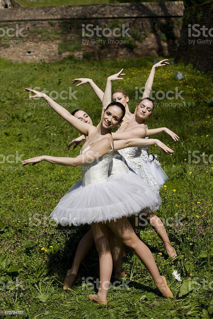 Ballerinas royalty-free stock photo