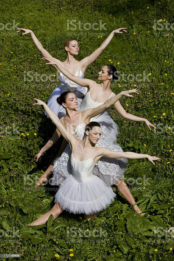 Ballerinas royalty-free stock photo