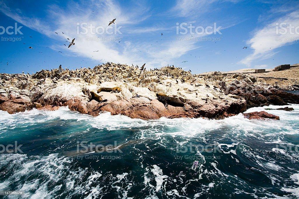 Ballestas Islands, Peru stock photo