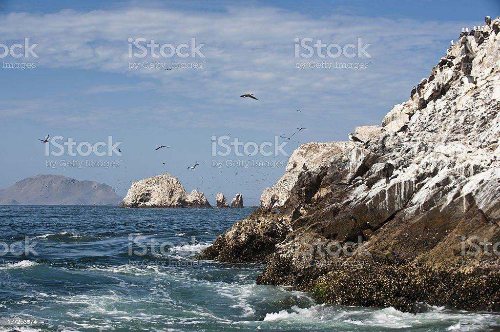 Ballestas Islands, Peruvian Coastline, Paracas National Park, Peru stock photo