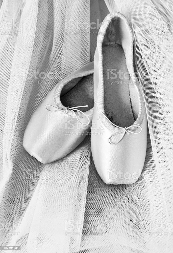 Ballet shoes on  tutu background stock photo
