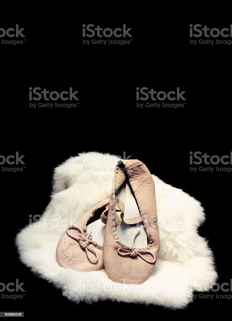 Ballet Slippers on Fur Piece royalty-free stock photo