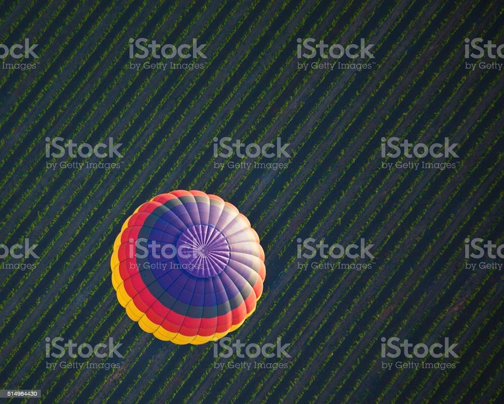 Balloon Floating Over Vineyard stock photo