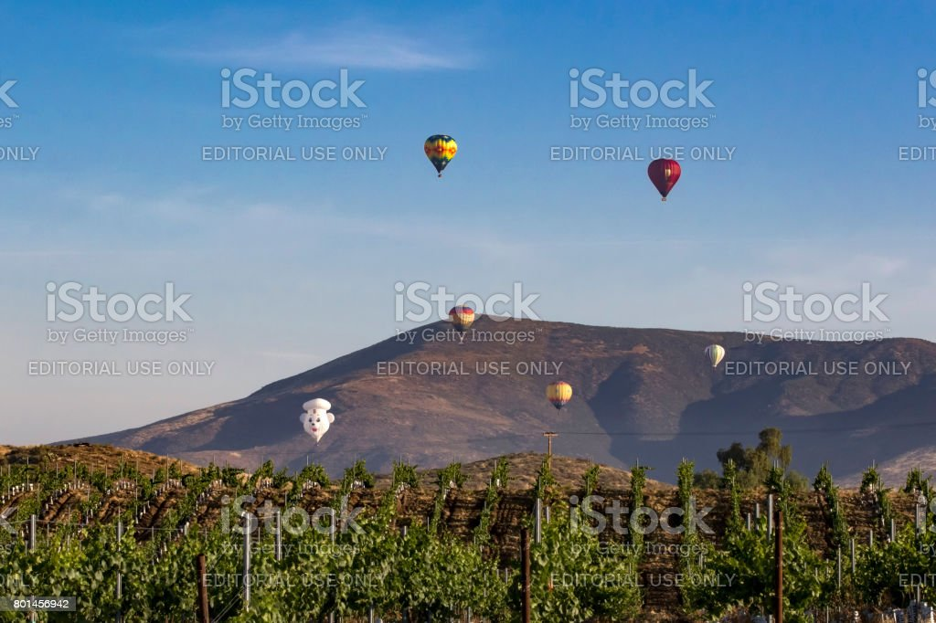 Balloon launch at California winery vineyard stock photo