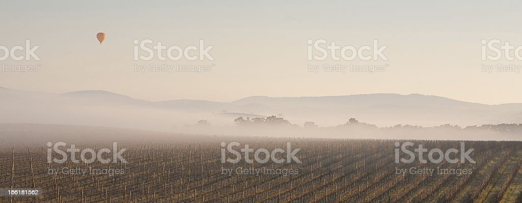 Ballooning in the Morning royalty-free stock photo