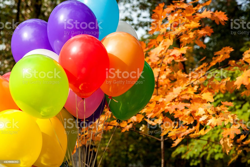 balloons in autumn park Yellow Autumn time, multicolored balloon stock photo