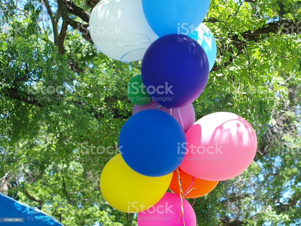 Balloons Under Canopy stock photo