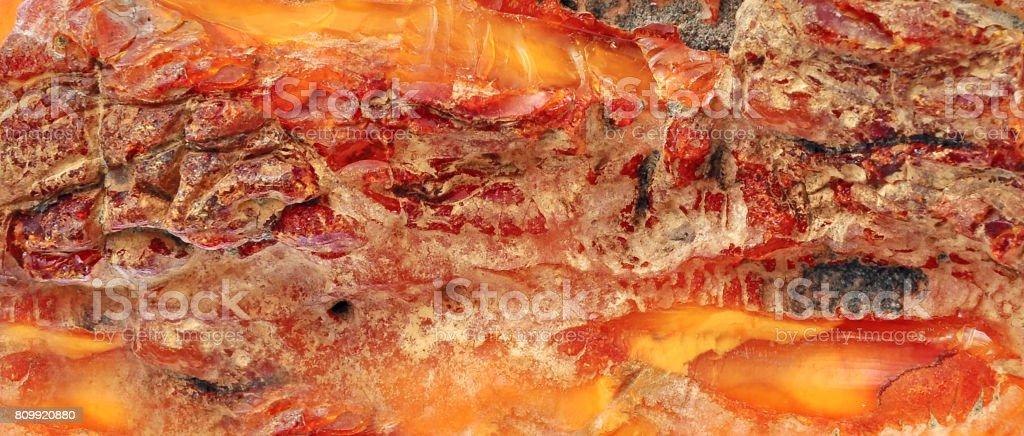 Baltic amber, resin segments stock photo