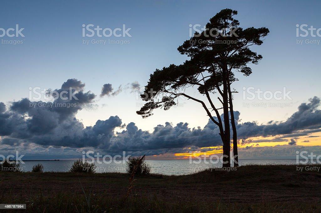 Baltic coast at sunset stock photo
