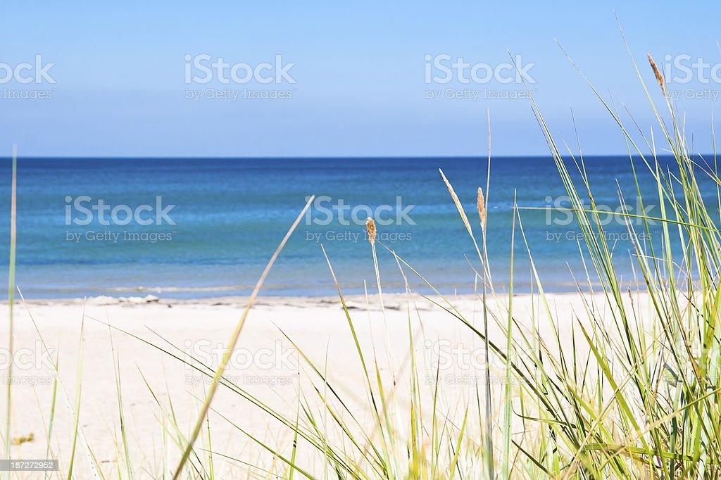 Baltic Sea Beach royalty-free stock photo