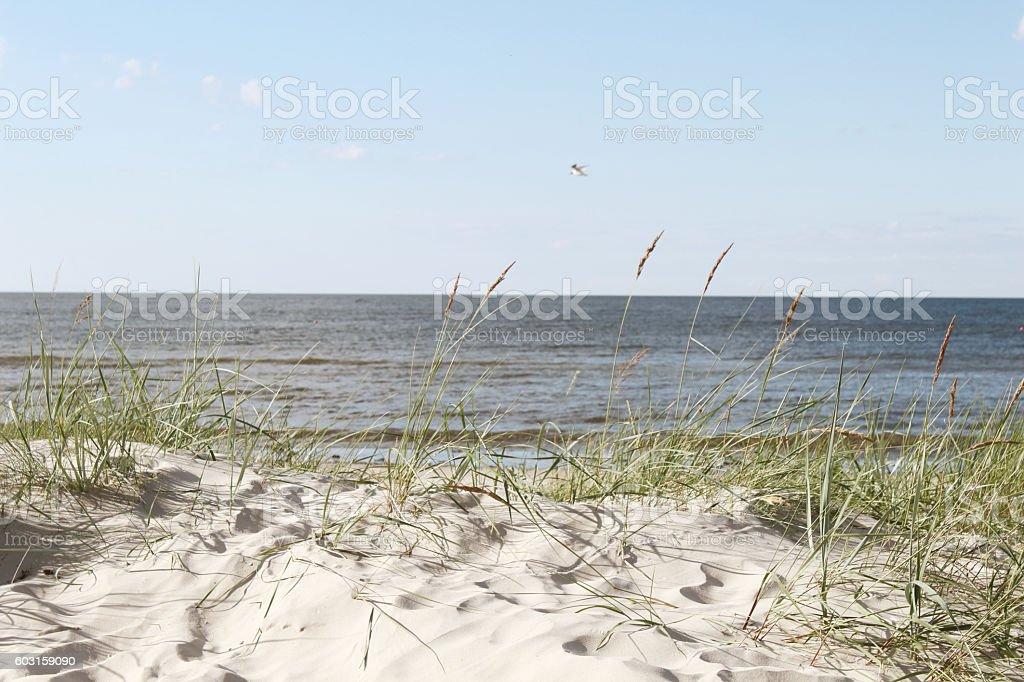 Baltic Sea Latvia stock photo