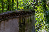 Bamboo and Chinese traditional wall