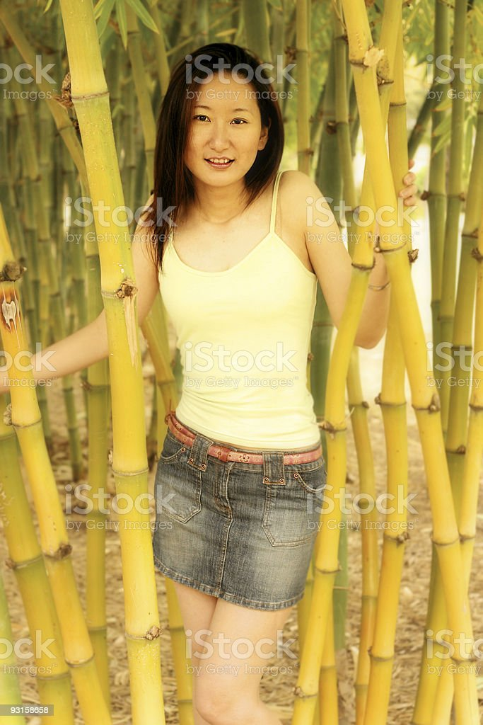 Bamboo Beauty stock photo