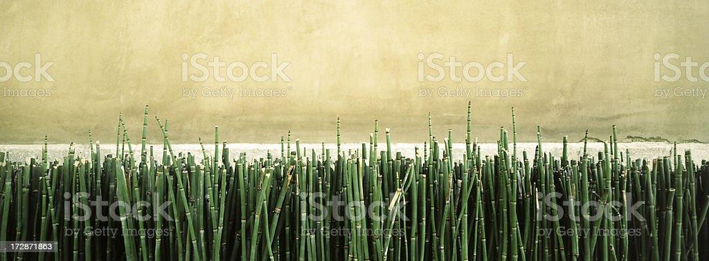 Bamboo Bed royalty-free stock photo