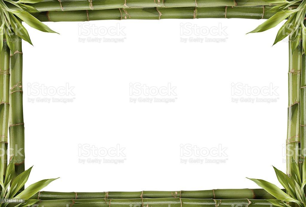 bamboo border stock photo