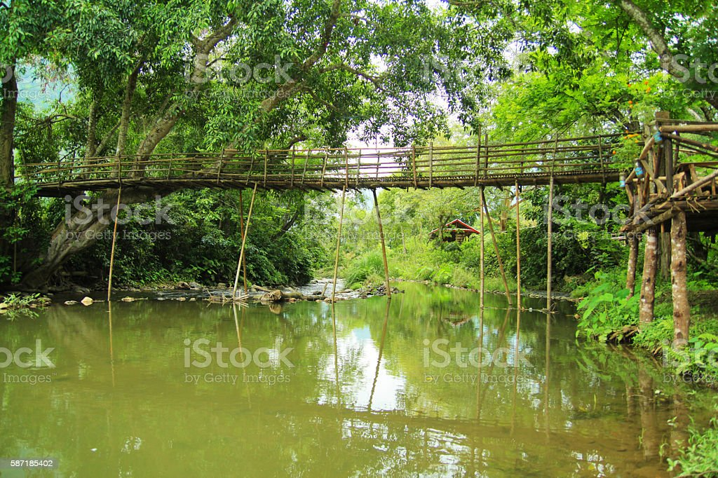 bamboo bridge in jungle over river stock photo