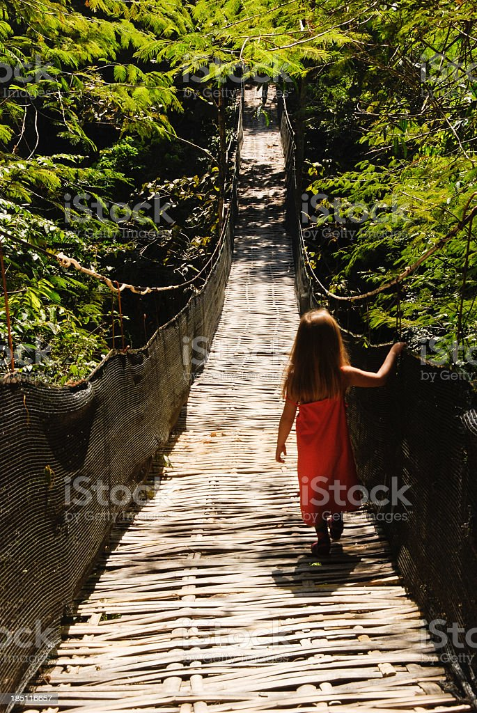 Bamboo bridge stock photo