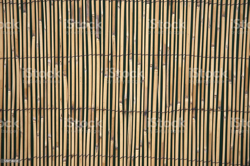 Bamboo Fence Panel royalty-free stock photo