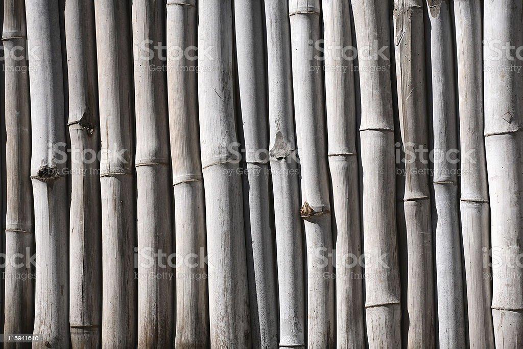 Bamboo fence royalty-free stock photo