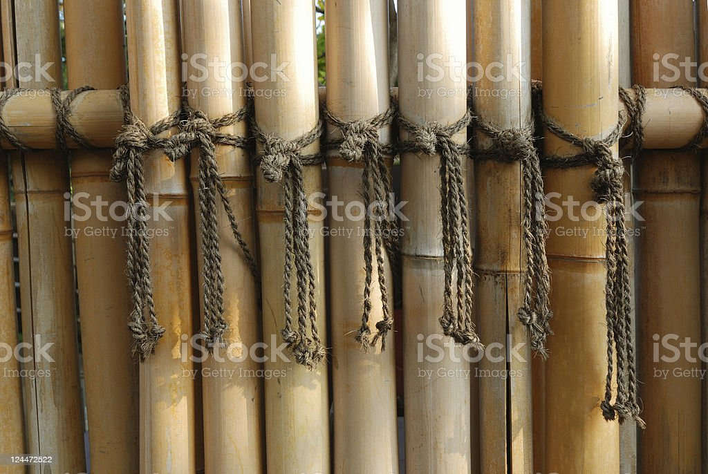 bamboo fence royalty-free stock photo