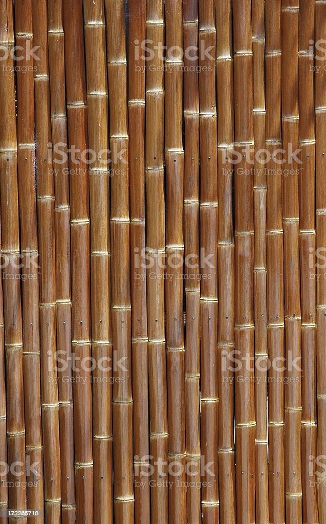Bamboo Gate stock photo