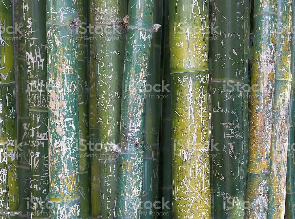 Bamboo Graffiti royalty-free stock photo
