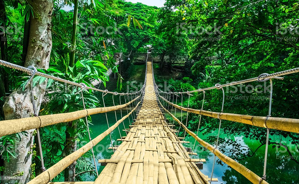 Bamboo hanging bridge over river in tropic forest stock photo