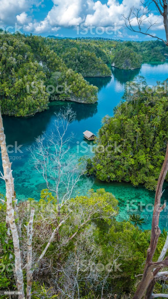 Bamboo Hut in middle of Mangrove near Warikaf Homestay, Kabui Bay and Passage. Gam Island, West Papuan, Raja Ampat, Indonesia stock photo