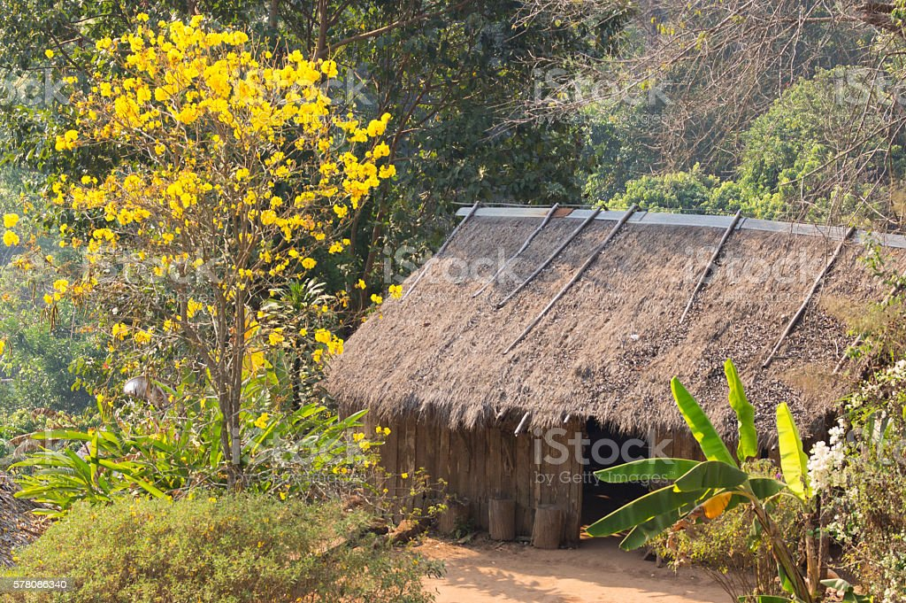 Bamboo hut in Northern Thailand stock photo