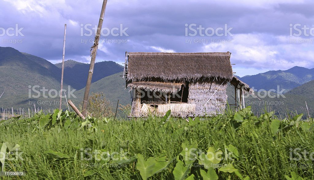 Bamboo hut with a reed roof on lake Inle stock photo