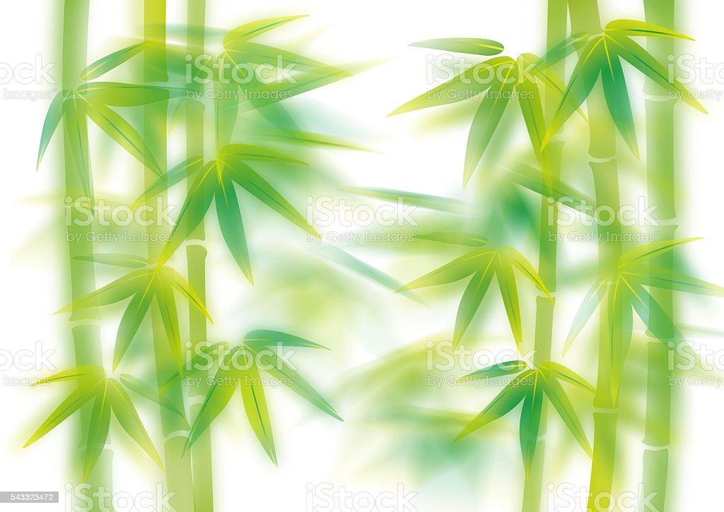 Bamboo illustration stock photo