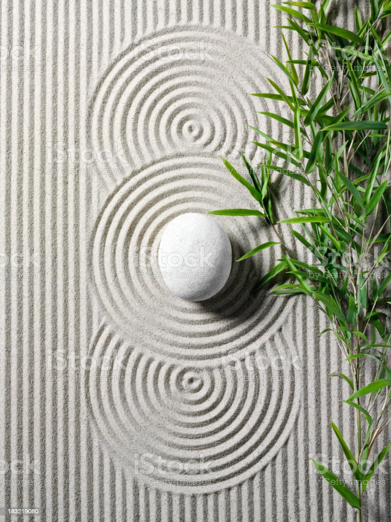 Bamboo in a Zen Garden stock photo