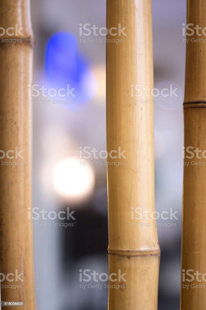 Bamboo in Japanese Asian restaurant stock photo