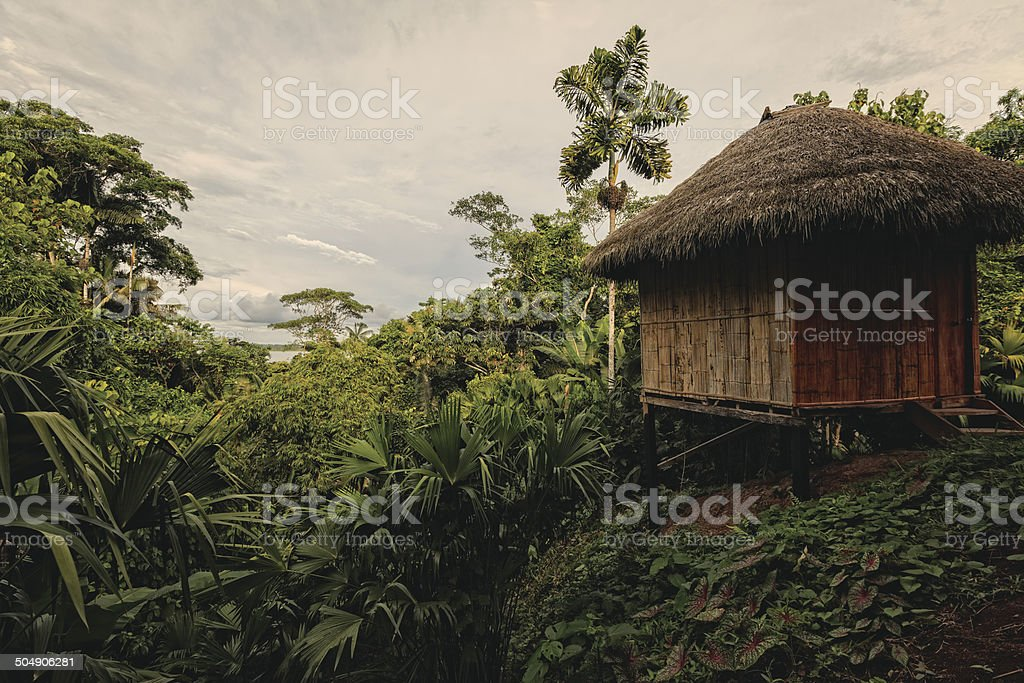 Bamboo Lodge In National Park Yasuni stock photo