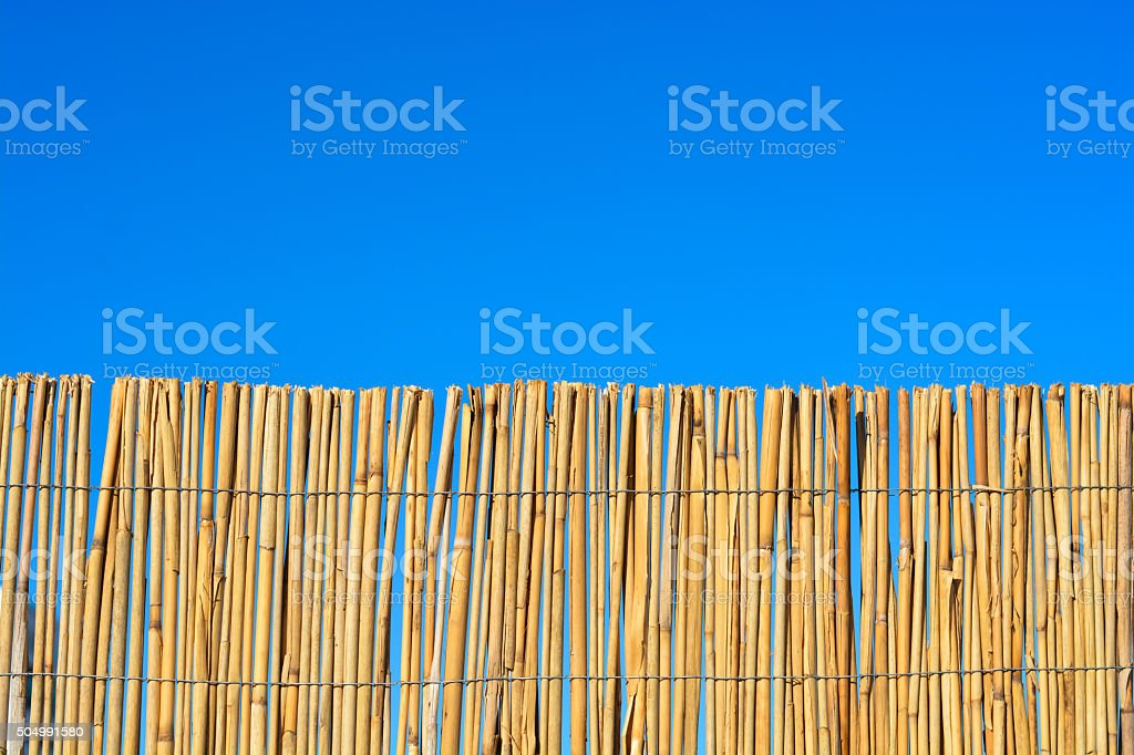 Bamboo or cane fence with blue sky stock photo