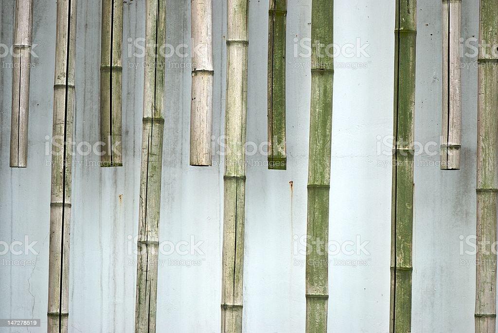 bamboo royalty-free stock photo