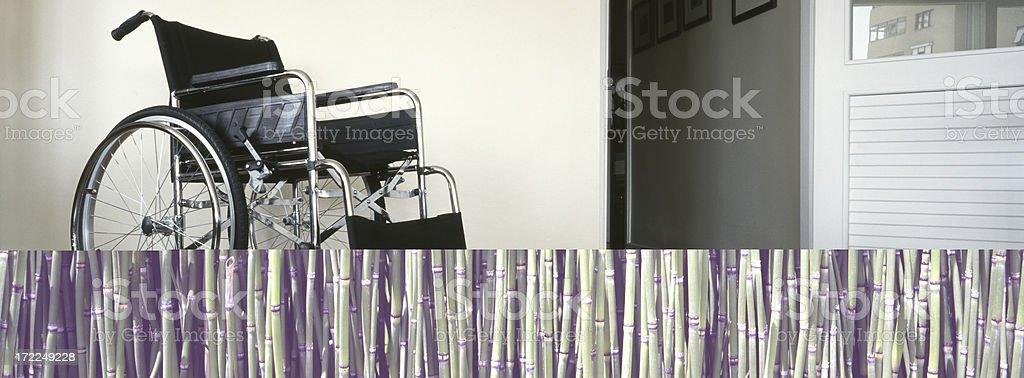 Bamboo Reeds royalty-free stock photo