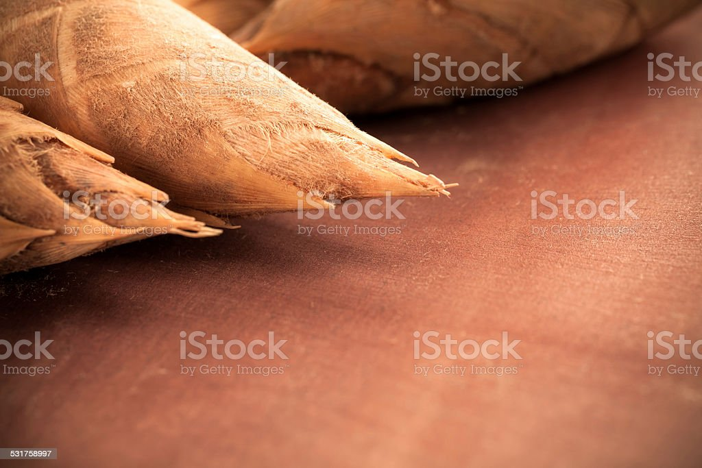 Bamboo sprout  on wooden board with selective focus stock photo
