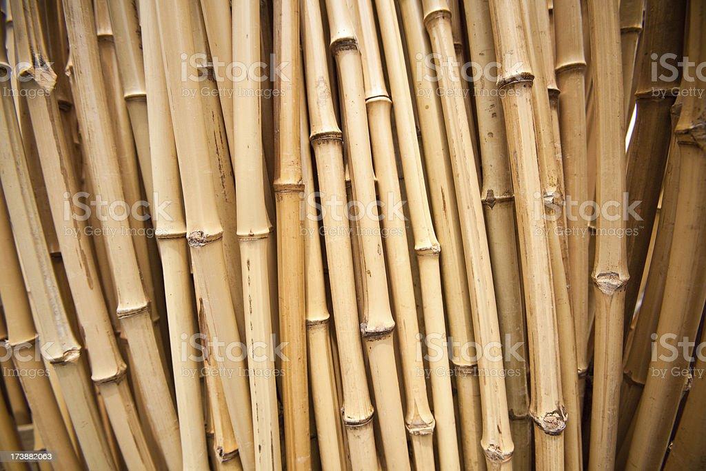 bamboo sticks stock photo