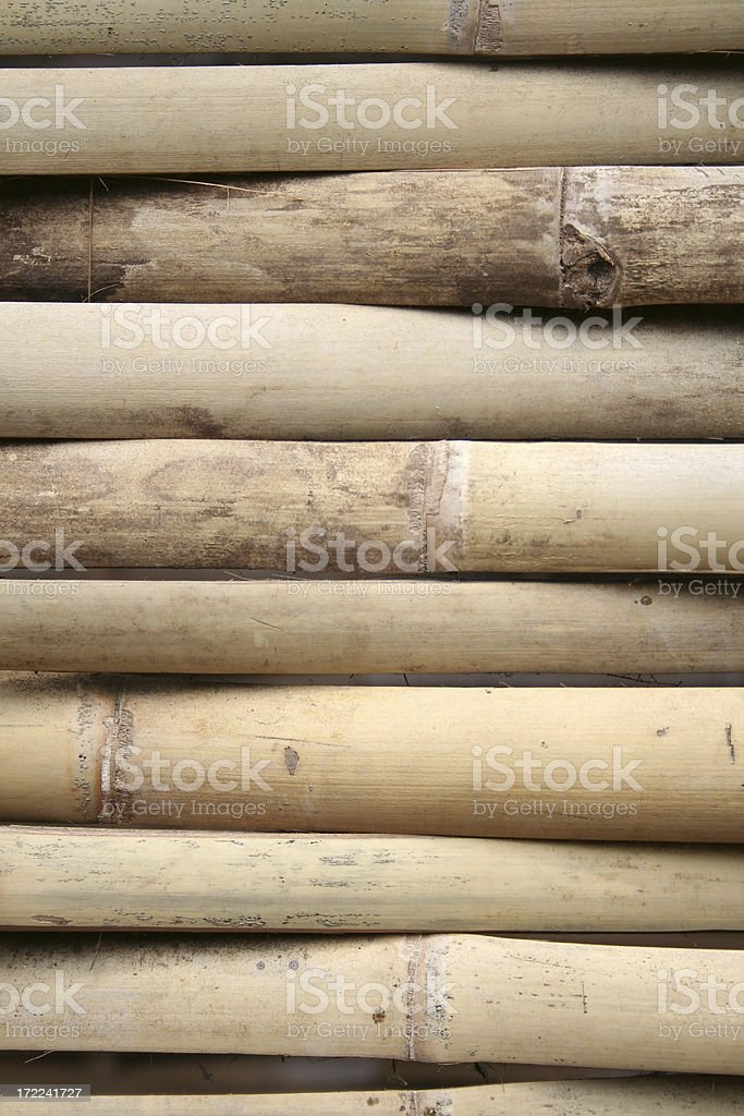 bamboo texture close up royalty-free stock photo