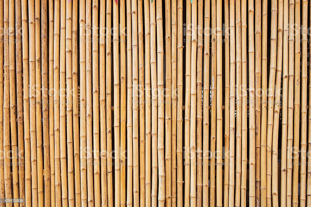 bamboo texture with natural patterns stock photo