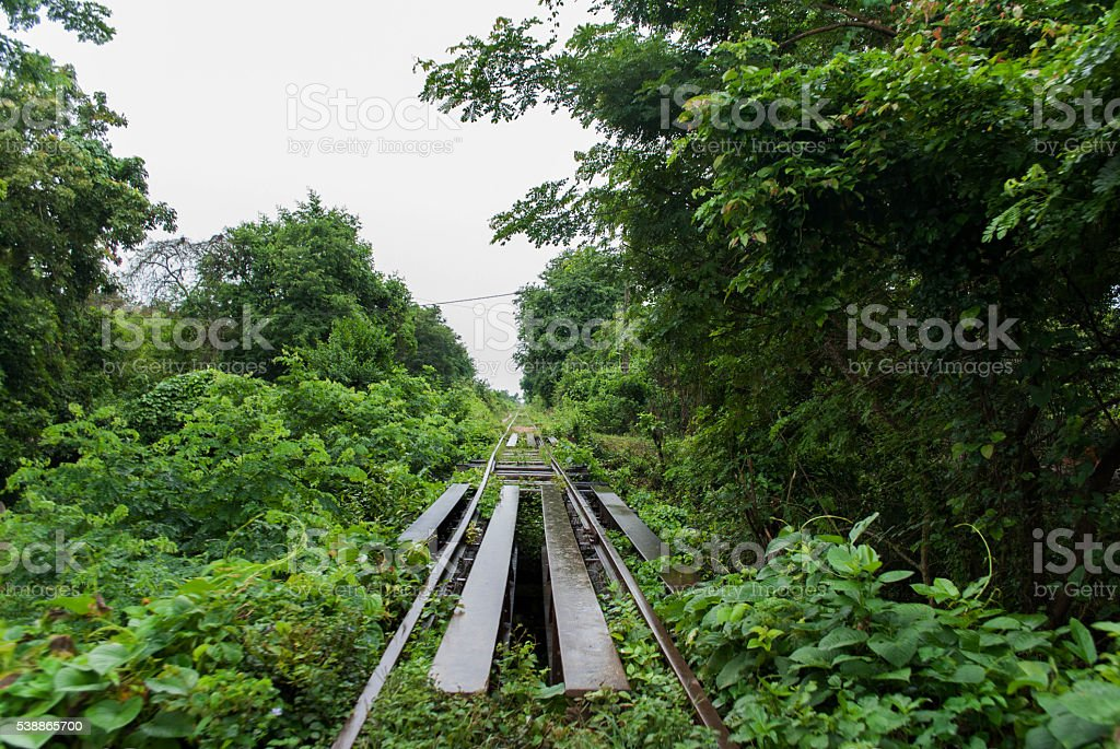 Bamboo train stock photo