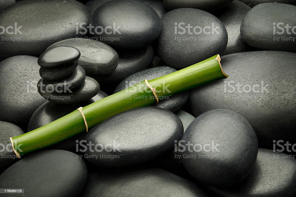 Bamboo Tranquility royalty-free stock photo