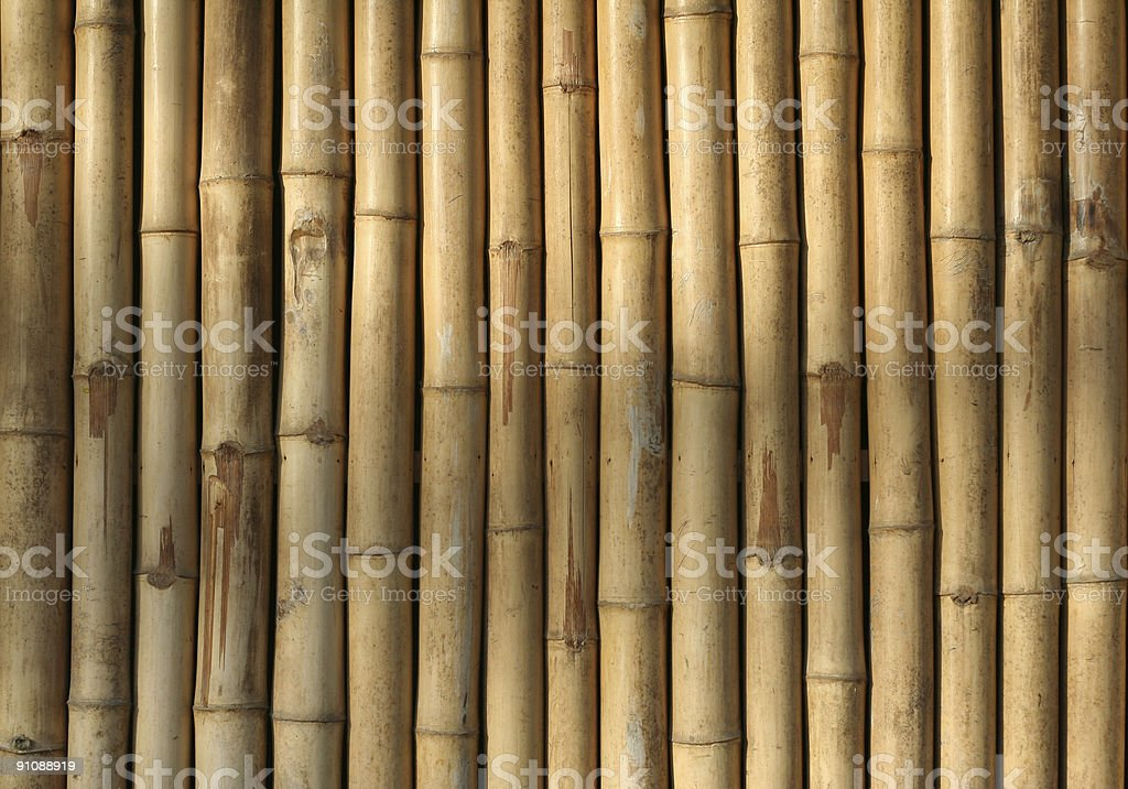 bamboo wall background asian theme royalty-free stock photo