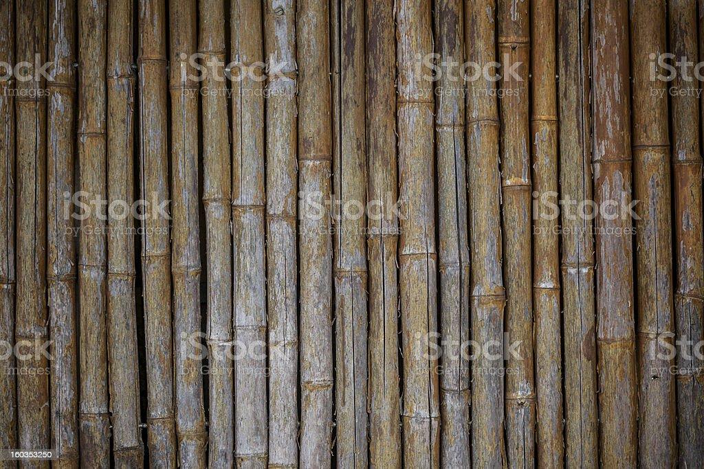 Bamboo Wall Texture royalty-free stock photo